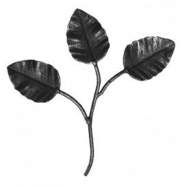 Ozdobné listy ruže